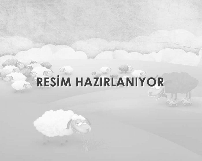 Ana Sayfa Video